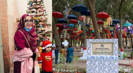 AC Hyderabad Qandeel Memon uses colorful umbrellas in mini urban forest