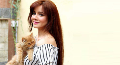My Twitter account got suspended for tweeting against France: Rabi Pirzada