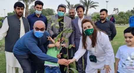 Designer Maria B plants 10,000 trees in Lahore