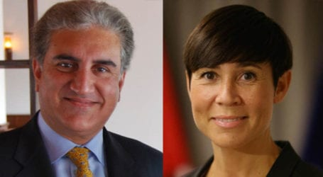 FM Qureshi discusses bilateral relations with Norwegian counterpart
