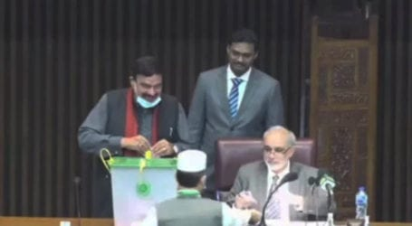 PTI set to emerge as largest party in Senate: Sheikh Rasheed