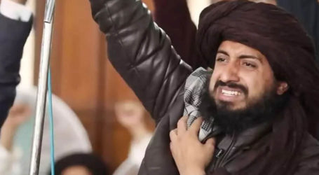 Federal cabinet approves ban on TLP