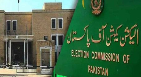 ECP accepts PML-N's application, orders recount in NA-249 by-polls
