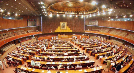 Who is responsible for 'budget book incident' in National Assembly?