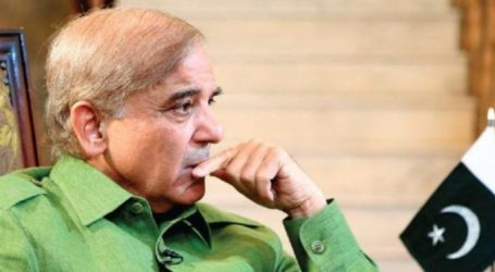 Govt withdraws appeal against LHC's order allowing Shehbaz to travel abroad