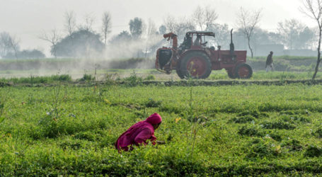 Agriculture credit disbursement witness 4.6% growth