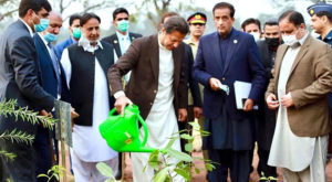 Prime Minister Imran Khan planting a tree. Source: PID/APP