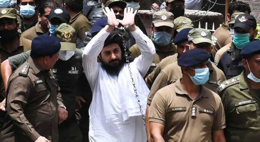 What is the future of TLP in Pakistan's politics?