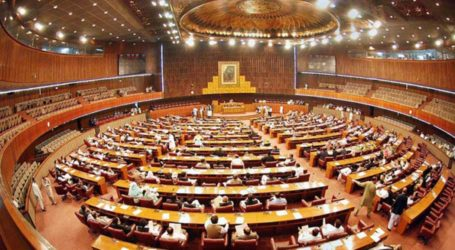 Top Army officials brief parliamentarians on national security