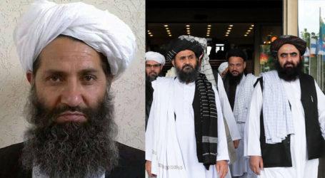 Taliban leader 'favours political settlement' in Afghanistan